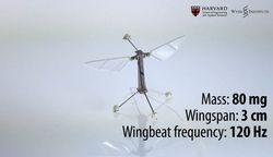 le-plus-petit-robot-volant_580xh