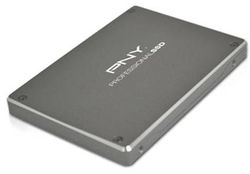 PNY Professional SSD