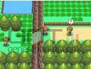 Pokemon diamant perle screenshot 6 small