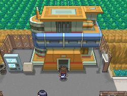 Pokemon Verion Blancet & noire 2 (10)