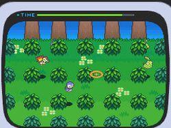 Pokemon Verion Blancet & noire 2 (11)