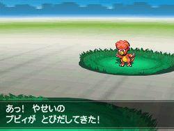 Pokemon Verion Blancet & noire 2 (14)