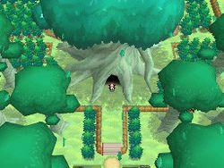 Pokemon Verion Blancet & noire 2 (18)
