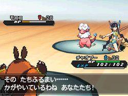 Pokemon Verion Blancet & noire 2 (3)