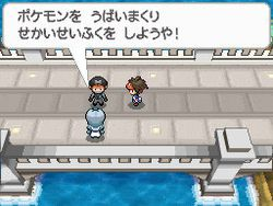Pokemon Verion Blancet & noire 2 (4)