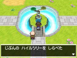 Pokemon Verion Blancet & noire 2 (6)