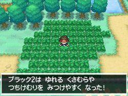 Pokemon Verion Blancet & noire 2 (7)
