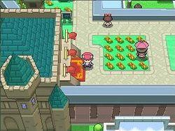 Pokémon Version Platine - Image 6