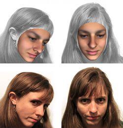 portrait robot 3D adn