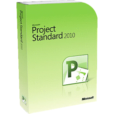 Project standard 2010