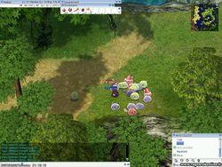 Ragnarok online (2)
