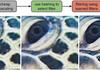 RAISR : quand Google réduit le poids des photos grâce au machine learning