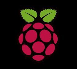 Raspberry Pi (1)