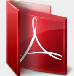 Reader for PDF