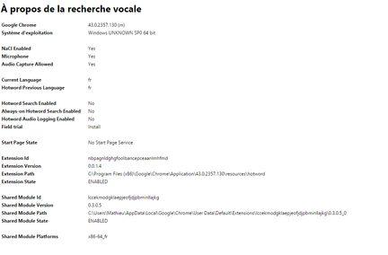 Reconnaissance vocale Chrome