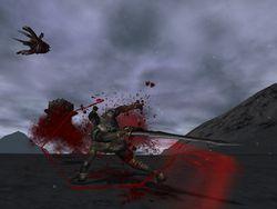 Requiem Bloodymare (6)