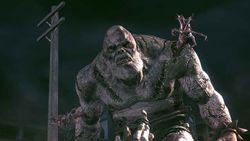 Resident Evil 5 (3)