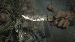 Resident Evil 7 -4.