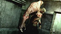 Resident Evil The Darkside Chronicles - Image 2