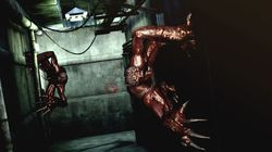 Resident Evil The Darkside Chronicles - Image 3