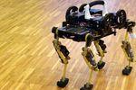 robot chat cheetah-cub