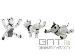Robot dasatech genibo small