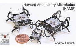 robot HAMR harvard