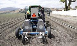 Robot-in-farming--Lettuce-007