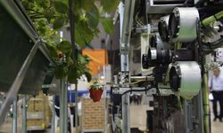 Robot-in-farming--robot-t-009