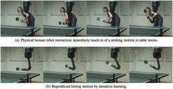 Robot pingpong
