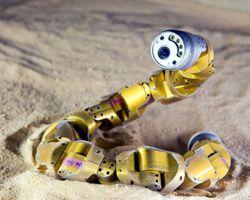 robot serpent