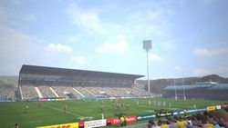 Rugby World Cup 2011 (8)