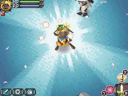 Rune Factory 3 - 5