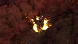 Sacred 2 Fallen Angel Ice & Blood - Image 9
