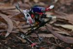 Salto : un robot sauteur avec des aptitudes au parkour