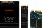SanDisk X300