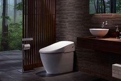 satis-toilet