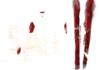 SAW 2 : le jeu annoncé en images