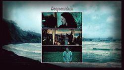 Scene It Twilight (3)