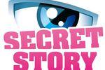 Secret Story - Logo