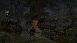 Le Seigneur des Anneaux - La Guerre du Nord - Image 2