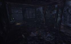 Silent Hill Downpour (8)