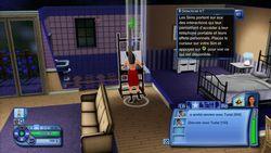 Les Sims 3 (17)