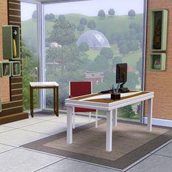 Les Sims 3 (1)