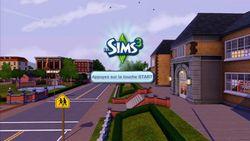 Les Sims 3 (8)