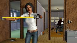 Les Sims 3 Ambitions (5)