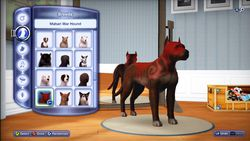 Sims 3 animaux & cie (4)
