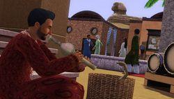 Les Sims 3 Destination Aventure (5)