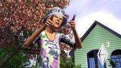 Les Sims 3   Image 2