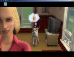 Les Sims Histoires d\'Animaux (4)